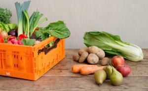Groente-Fruit-Beebox