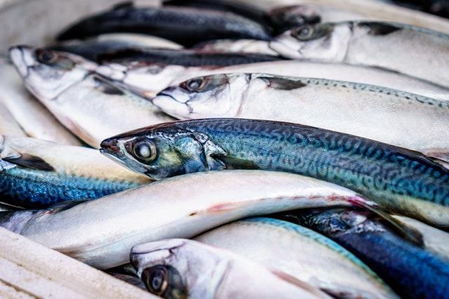 maaltijdbox zonder vis